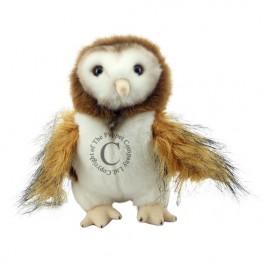Barn Owl - Wilberry Woodland