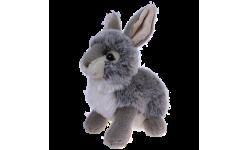 Bunnie Soft Toys