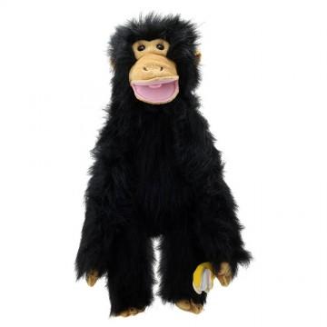 Chimp - Medium Primates