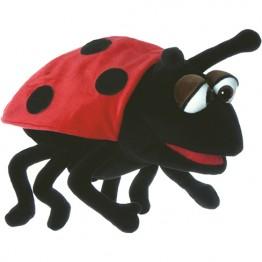 Hubi the Ladybird