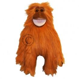 Orangutan Funky Monkey
