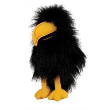 Baby Crow