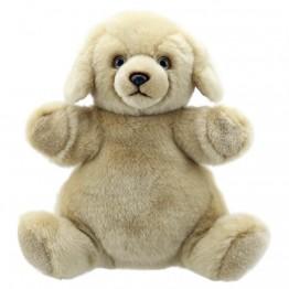 Labrador - Cuddly Tumms