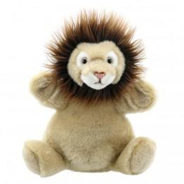 Lion Cub - Cuddly Tumms