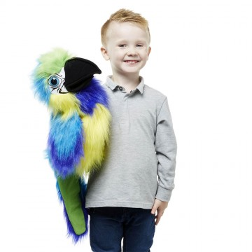 Large Bird - Blue & Gold Macaw