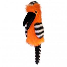 Large Birds: Hoopoe