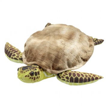 Large Creatures  - Turtle Puppet