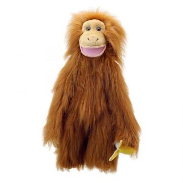 Orangutan - Medium Primates