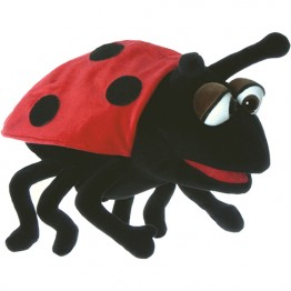 Hubi the Ladybird