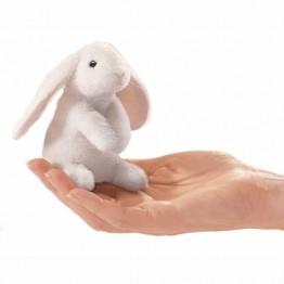 Mini Lop Ear Rabbit