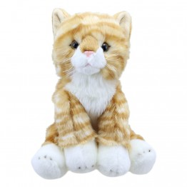 Ginger Cat - Wilberry Favourites Soft Toy