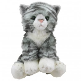 Tabby Cat - Wilberry Favourites Soft Toy