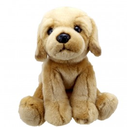 Yellow Labrador - Wilberry Favourites Soft Toy