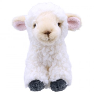 Lamb - Wilberry Mini Soft Toy