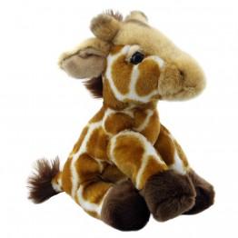 Giraffe - Wilberry Wild Soft Toy