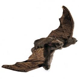 Bat ( Brown )