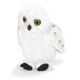 Snowy Owl with real call