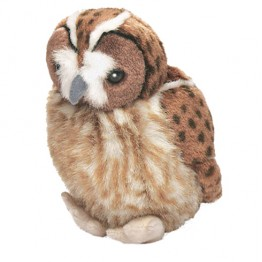 Tawny Owl with real call