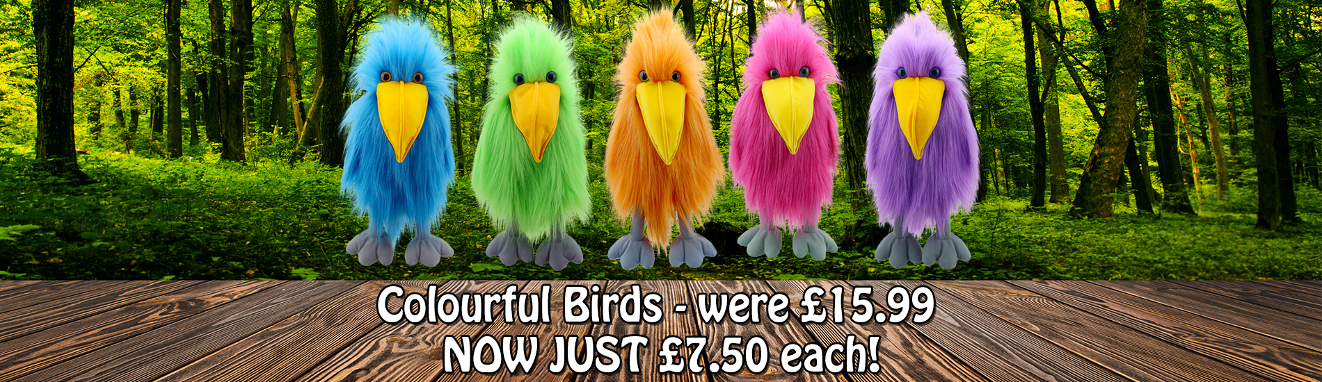 Main-Banner-Basic-Birds-sale-New
